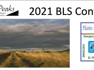 Protected: 2021 BLS Conference